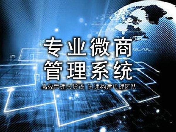 微商直销系统帮企业建立专属网络营销